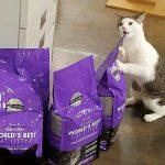 World's Best Cat Litter Contest