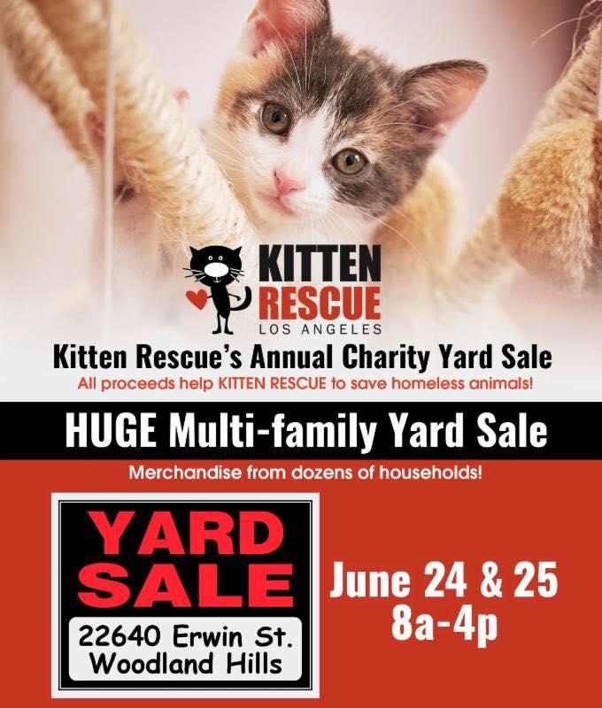 Kitten Rescue's Annual Charity Yard Sale
