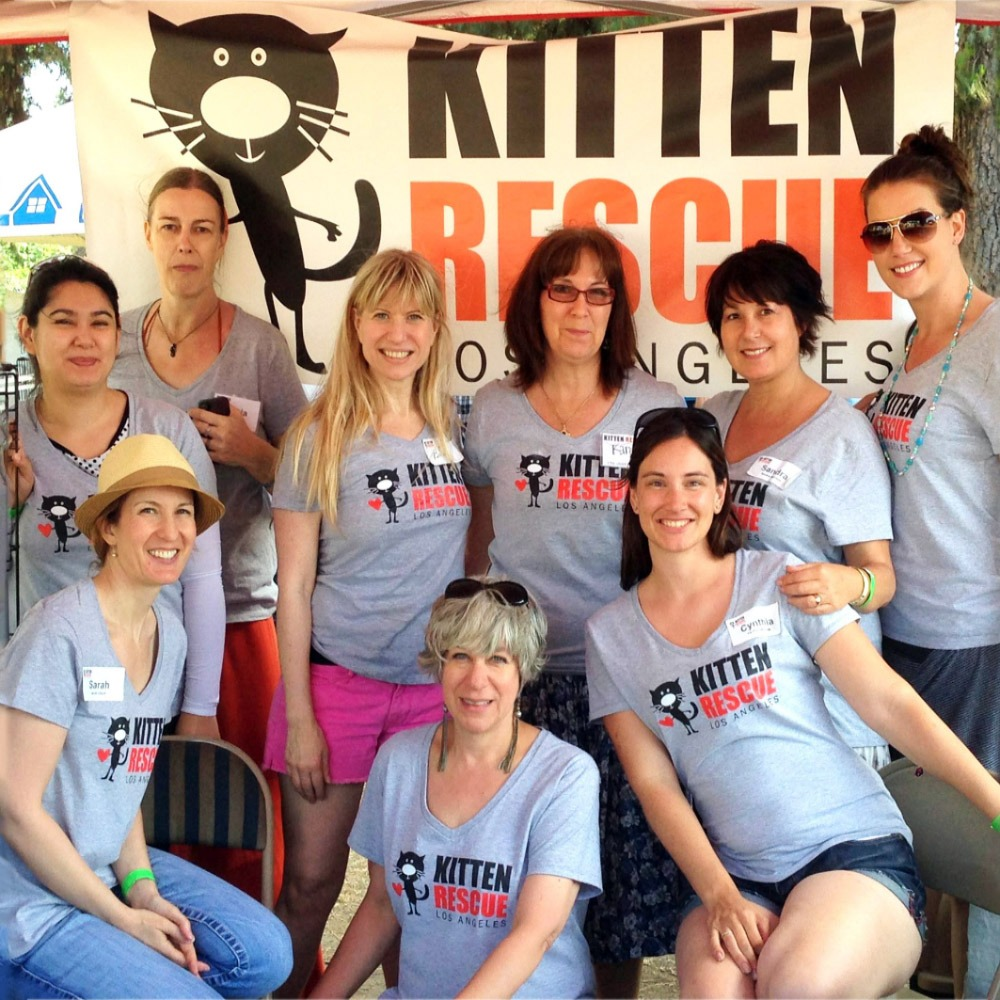 Kitten Rescue Volunteer Opportunities