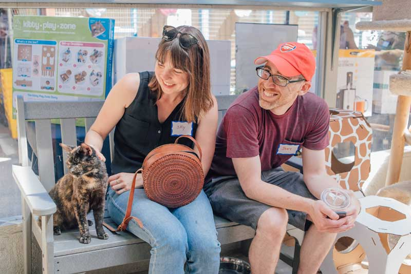 Kitten Rescue's Open House