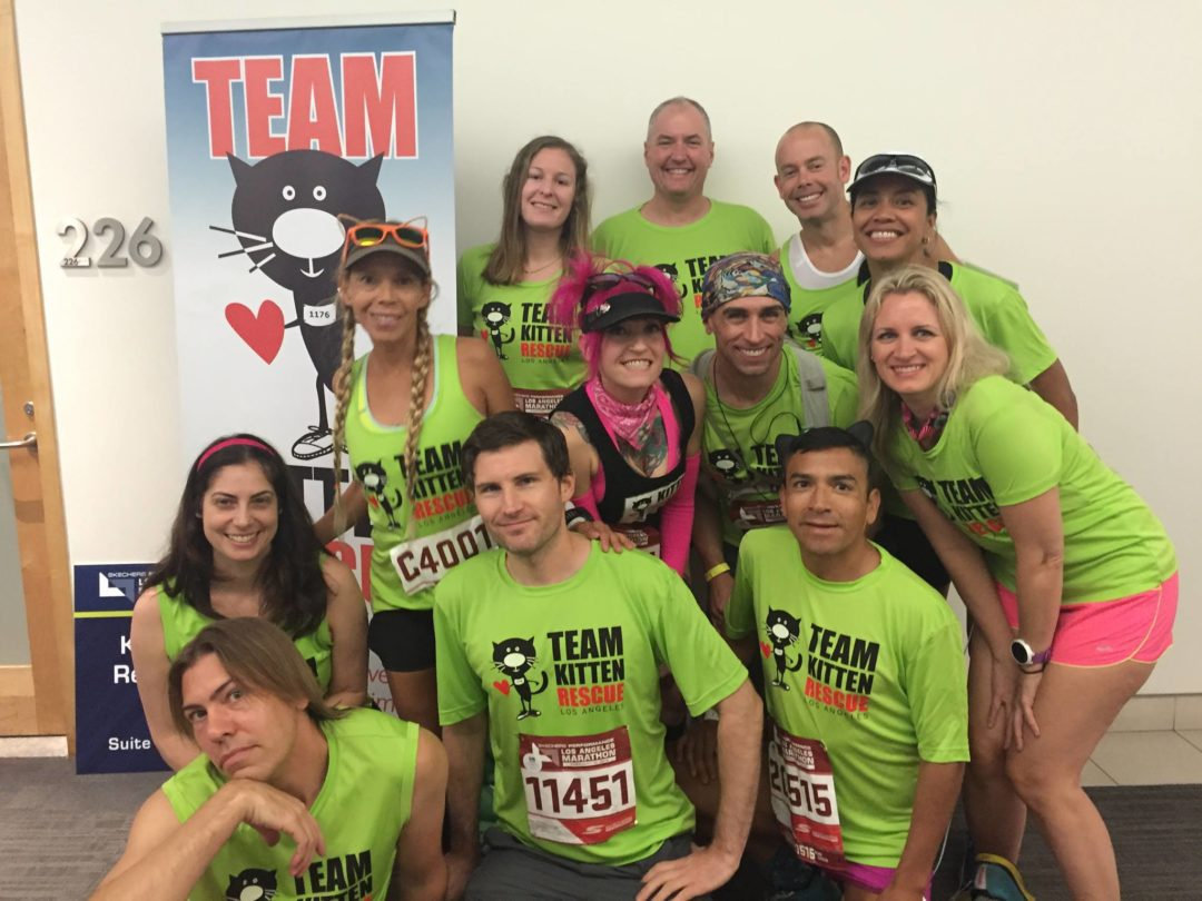 Team Kitten Rescue in 2017 LA Marathon