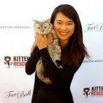 Kitten Rescue's 10th Annual Fur Ball