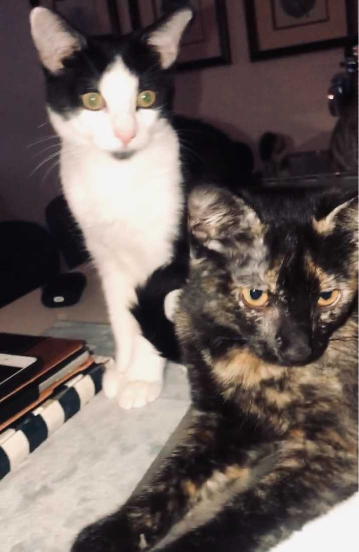 Bond-and-Mei-Lei
