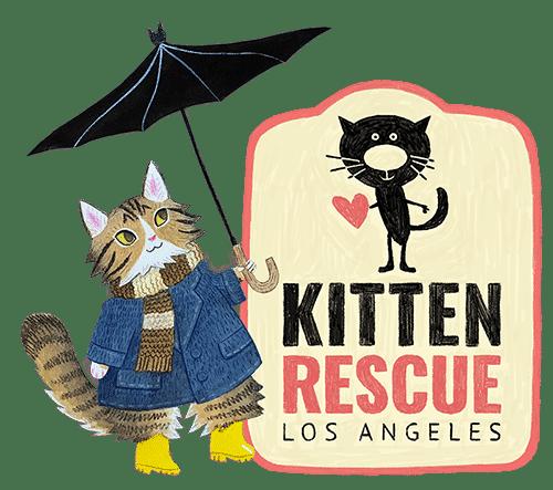 Virtual Kitten Shower
